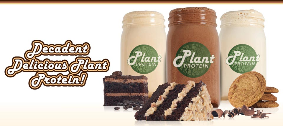 All new Plant Protein, available in 3 flavors!